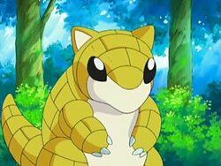 Sandshrew in Pokemon anime