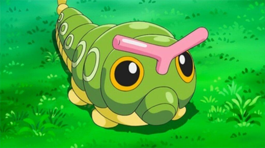 Caterpie in Pokemon anime